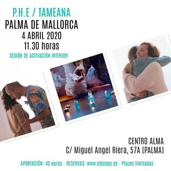 Sesión de Tameana / P.H.E - Palma de Mallorca